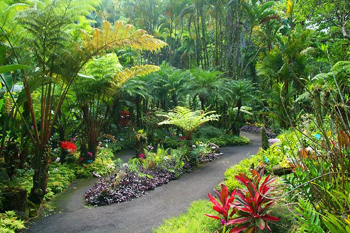 Visit a Botanical Garden & Take a Scenic Drive